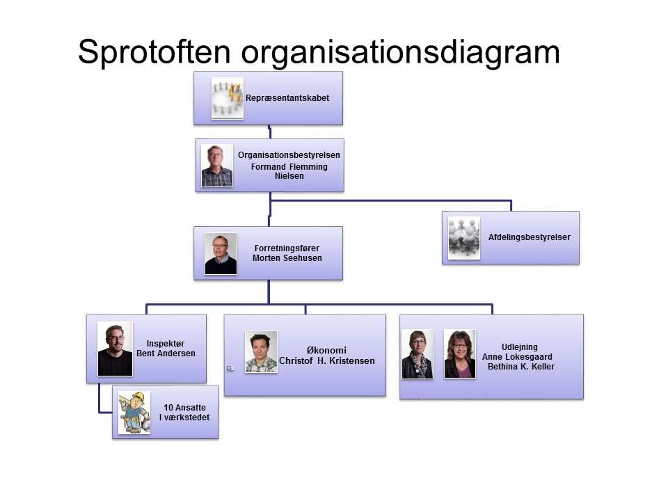 organisationsdiagram sprotoften